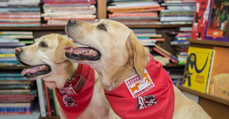 Perros y Letras R.E.A.D. España
