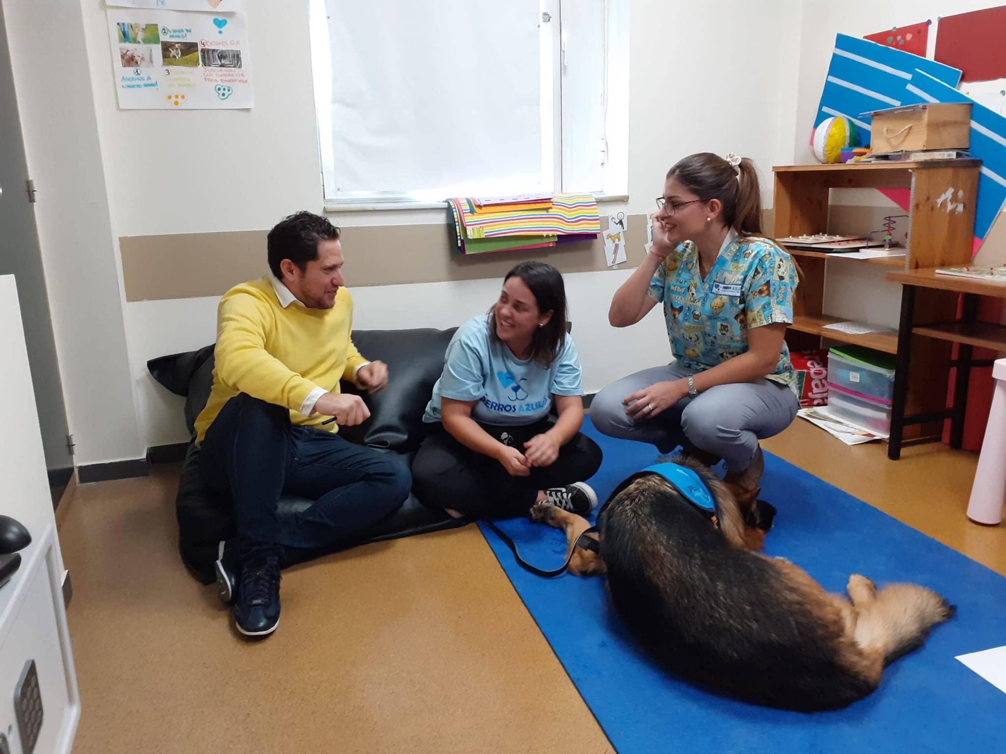 Nuestra experiencia con los perros azules